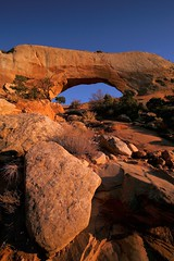 Wilsons Arch & Rock (Brian Callahan (Luxgnos.com)) Tags: tree utah sandstone arch redrocks wilsonarch entradasandstone wilsonsarch briancallahan shinsanbc luxgnosphotography luxgnosis wwwluxgnoscom