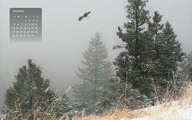 12-10 Eagle Pines Wallpaper Calendar