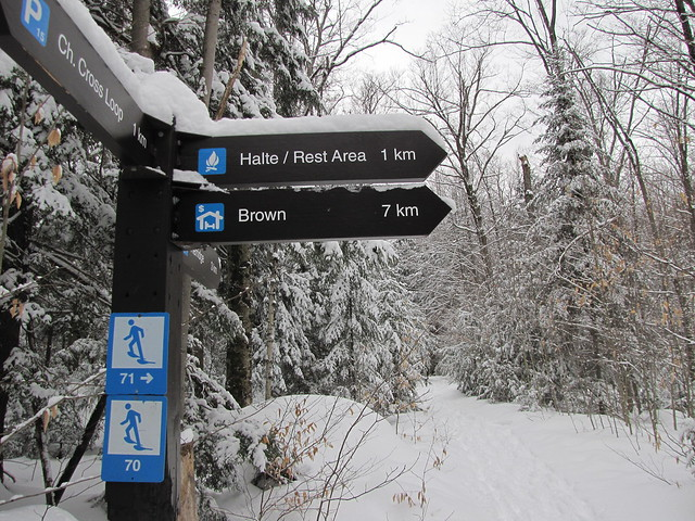 Snowshoe Trails