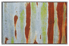 Day 181 (Tres Seis Cinco) Tags: 365 365photoproject 365project aphotoaday abstract rust brown green grey day 181