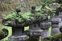 IMG_2622 (normafincher) Tags: japan nikko nikkonationalpark