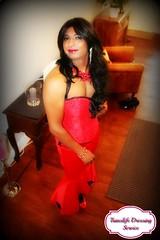 Translife Dressing Service Model Devyani