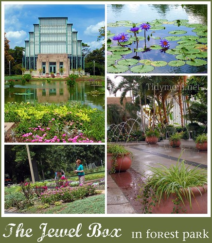The Jewel Box collage {Forest Park} St. Louis, MO