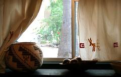 Preserving Sonoran Culture - Lutisuc
