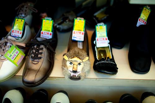 Lion shoe!