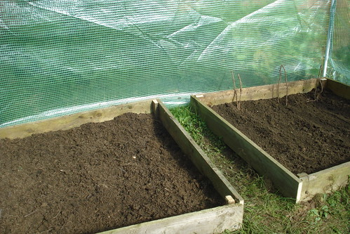 Veg Beds Freshly Sown