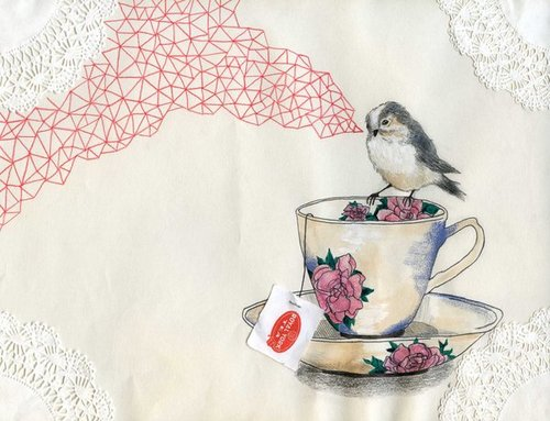 lace, pink, rose, roses, garden, bird, illustration, tea, beautiful, via weheartit