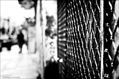 a quiet seaside village... (helen sotiriadis) Tags: bw white black monochrome canon fence published dof bokeh perspective athens depthoffield greece crisis canonef50mmf14usm thissio canoneos40d