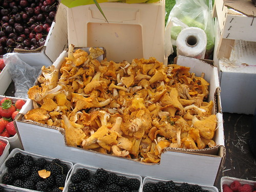 wild-collected chanterelle mushrooms