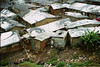 kibera 'JR'