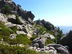 Dans la traversée Furcata - Quercitella : la trace contournant la pointe 1396m par le versant SE