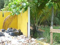 Demuestra tu Huella Ecolgica: fotografa | Certamen Multimedios 2010 (NAHJ UPR Chapter) Tags: fotografia tu nacional 2010 upr periodistas huella hispanos certamen asociacion ecologica capitulo multimedios demuestra
