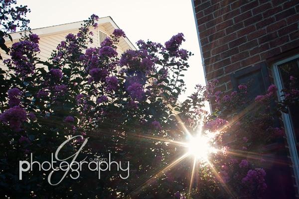 Sep062010_0079 copy