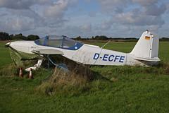 D-ECFE