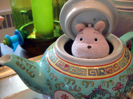 Mouse in Teapot