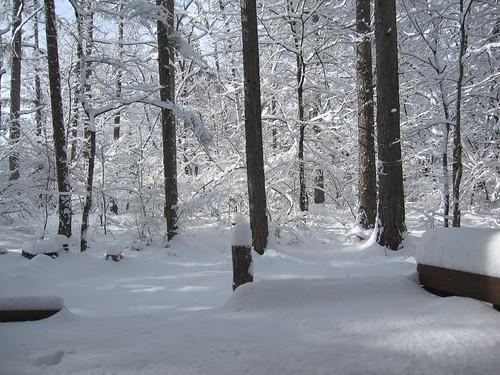 ベランダから見た庭の積雪 2010年4月17日7:19 by Poran111