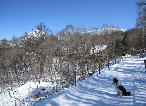 春の積雪/後ろ左は蓼科山、右は北横岳 2010.3.30 by Poran111