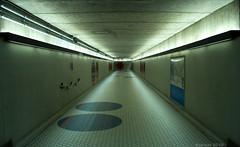 El Corredor (dzpixel) Tags: night canon underground flickr sam mtl circles perspective corridor nuit lam couloir corredor vanish 550d t2i lumierre sousol dzpixel