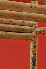 uniones con guadua (carolinazuarq) Tags: colombia bamboo estilo bamb casas diseo detalles guadua estructuras decoracin construcciones tecnologas uniones arquitecturacolombiana zuarqarquitectos arquitectoscolombianos