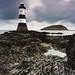 Lighthouse Seaweed