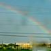 260/365: Wet Rainbow