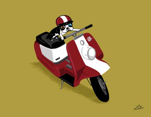 APRIL: Harley Topper