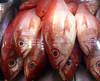 Pargo II (carlosmaco) Tags: fish venezuela domingo pulpo mariscos mero carite laguaira cazon litoralcentral mosquero picua estadovargas mercadopescado