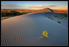 Sunset at Bruneau Sand Dunes (Dylan MacMaster) Tags: sunset landscape idaho goldenhour bruneausanddunes fotocompetitionbronze fotocompetitionsilver fotocompetitiongold