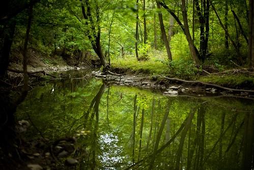 T.J. Dolan Natural Area