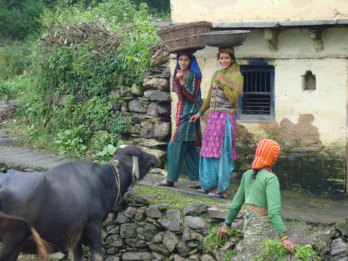 Women at work in India's Himalayan foothills