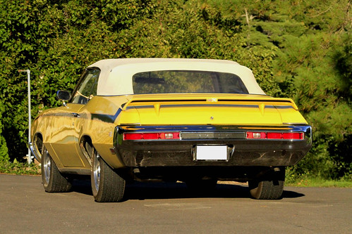 1970 Buick Skylark Convertible (Set)