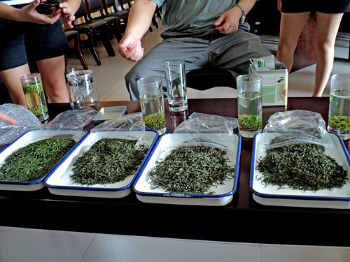 Tea tasting in Dengcun