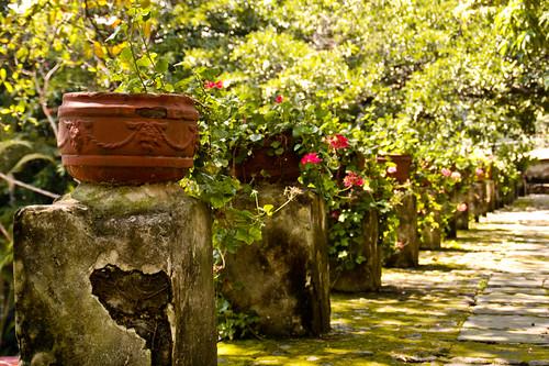 mexico 0005 September 29, 2006