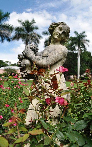 Rose Garden at the Ringling Museum, Sarasota, Fla.