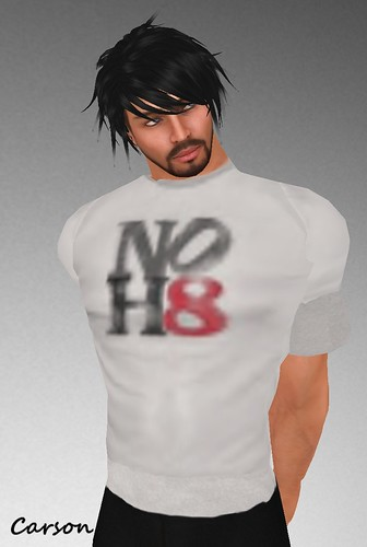 MHOH4 # 166 - Sky Fashion  NO H8 Faded Tee