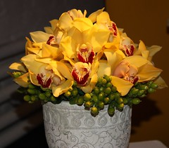 Flowers by Shop Studios