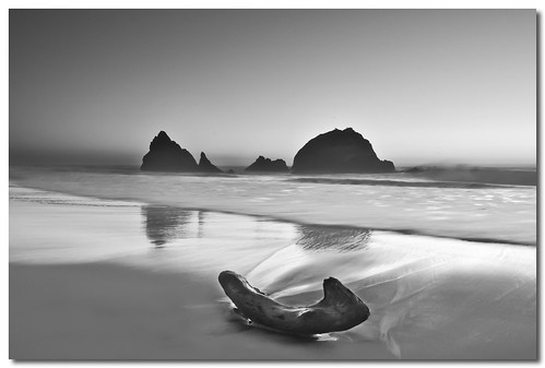 Black And White Photography Of The Beach