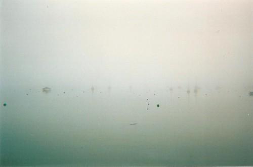 Fal Fog II