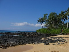 Makena Cove View (stu_macgoo) Tags: ocean trees beauty hawaii sand scenery maui makena makenacove
