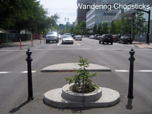 12 Mill Ends Park (Smallest Park in the World) - Portland - Oregon 5