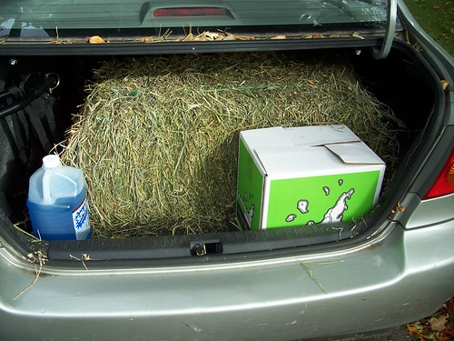 hay & a case of wine