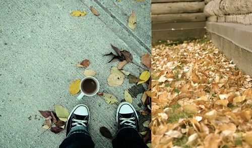 the tuesday diptych project