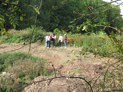 Students exploring the ecology alongside the trackbed