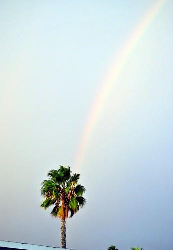 rainbow cliche