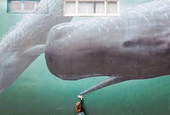 Kaikoura sperm whale (Le Fabuleux Destin d'Amlie) Tags: newzealand building art girl wall three town kid toddler mural child pentax review canterbury southisland whale whales matching marlborough curiosity aotearoa kaikoura whalewatch forme softtoy zz spermwhale nsr k7 cins mfset