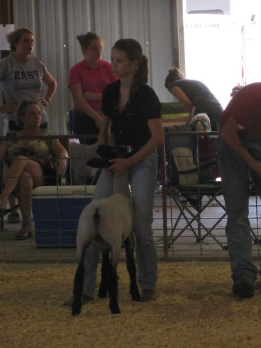 Carlye Dozier is a 17 year-old 4-H member who enjoys showing lambs as well as science.