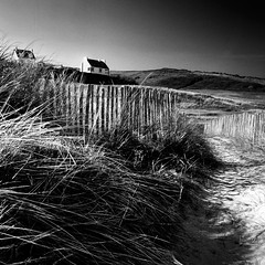 Isolated (fifich@t / Franise / off) Tags: blackandwhite bw france beach square landscape coast brittany dunes fineart nb grayscale seashore blackdiamond greyscale copyright squarepicture allrightsreserved classicbw formatcarr copyrightallrightsreserved tousdroitsrservs nikond300 absoluteblackandwhite alwaysexcellent absolutegoldenmasterpiece bestcapturesaoi blackisthecolour magicunicornverybest magicunicorntheverybest magicunicornmasterpiece magicunicornmasterpieces flickrstruereflection1 flickrstruereflection2 flickrstruereflection3 flickrstruereflection4 flickrstruereflection5 flickrstruereflection6 flickrstruereflection7 flickrstruereflectionlevel5 flickrstruereflectionexcellence masterclasselite lightroomps fifichat1 frs fificht frs