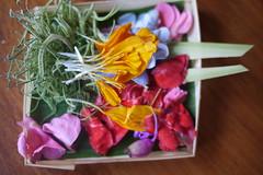 A Balinese Flower Offering