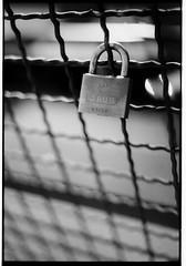 Lock (koeb) Tags: white black fence 50mm nikon lock 18 zaun schloss mainz ilford 125 f70 iso125 mayence