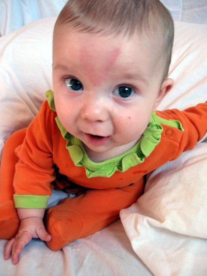 Pumpkin - 6